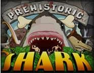Prehistorische Haai