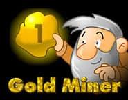 Goud Zoeker 1